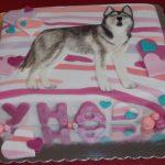 Decije torte Koki-585