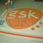 Neobicne torte Koki -029