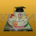 Neobicne torte Koki -046