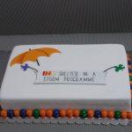 Neobicne torte Koki -074