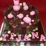 Rodjendanske torte Koki-361