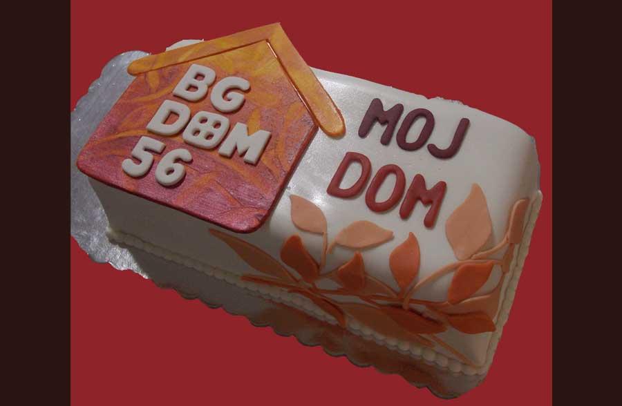 Neobicne torte Koki - 126
