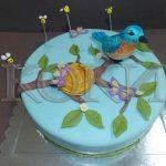 Decije torte Koki-092