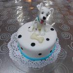 Decije torte Koki-495
