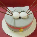 Decije torte Koki-565