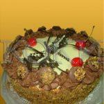 Rodjendanske torte Koki-088