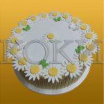 Rodjendanske torte Koki-092