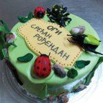 Rodjendanske torte Koki-252