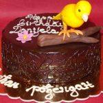 Rodjendanske torte Koki-341