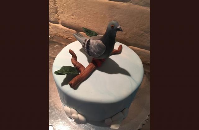 Neobicne torte Koki-119