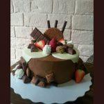 Rodjendanske torte Koki - 466