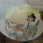 Rodjendanske torte Koki-479
