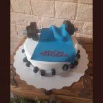 Rodjendanske torte Koki-489