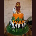 Decije torte Koki-810