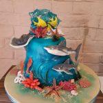 Decije torte Koki - 1000