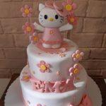 Decije torte Koki-790