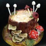 Rodjendanske torte Koki - 781